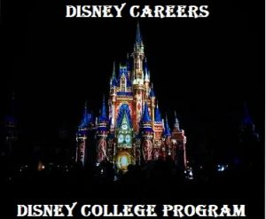 what is the disney college program